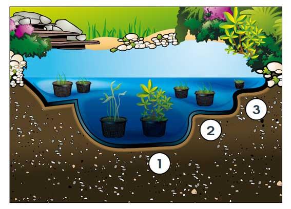 Profondeur du bassin de jardin Amenagement d un bassin de jardin